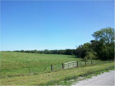 Clinton County Residential Lots & Land For Sale: 373 A SW 247 Street