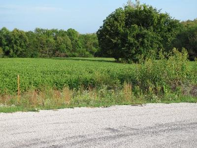 Residential Lots & Land For Sale: Lot 17 204th Street
