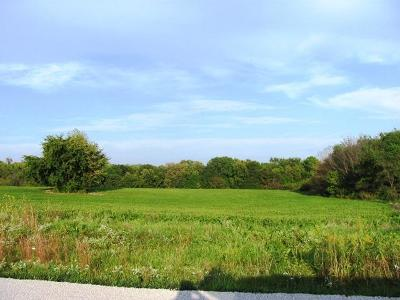 Residential Lots & Land For Sale: Lot 16 204th Street