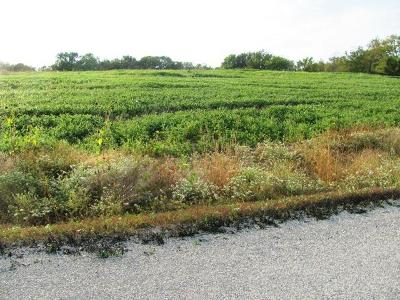 Residential Lots & Land For Sale: Lot 3 204th Street