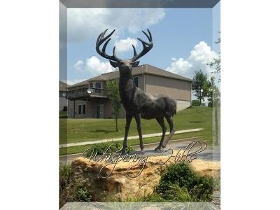 Knob Noster Residential Lots & Land For Sale: 105 Marsh Court