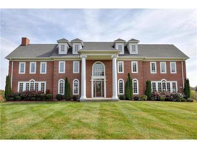 Grain Valley Single Family Home For Sale: 6917 S Arnett Road