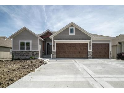 Grain Valley Single Family Home For Sale: 707 SW Joseph Circle