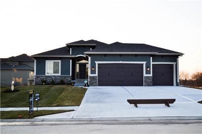 Kansas City Single Family Home For Sale: 10426 N Fisk Avenue