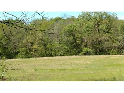 Smithville Residential Lots & Land For Sale: Lot #22-169 Highway