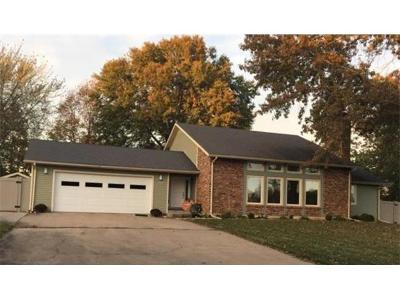 Livingston County Single Family Home For Sale: 1117 Brennan Drive