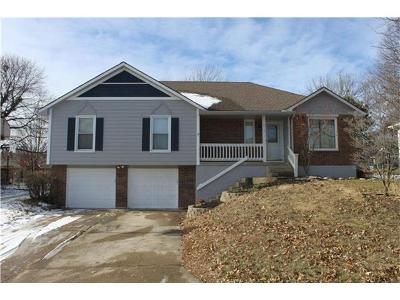 Lee's Summit MO Single Family Home Sold: $156,350