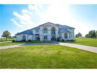 Grain Valley Single Family Home For Sale: 4104 S Rust Road