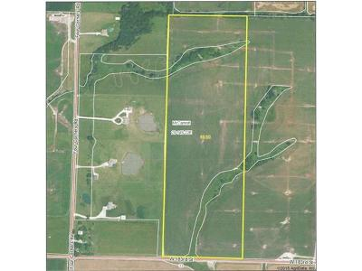 Residential Lots & Land Sold: 183rd Street