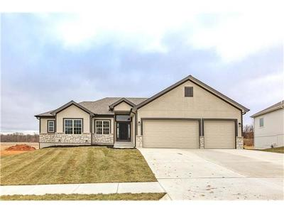 Kearney Single Family Home For Sale: 203 Old Trail Run
