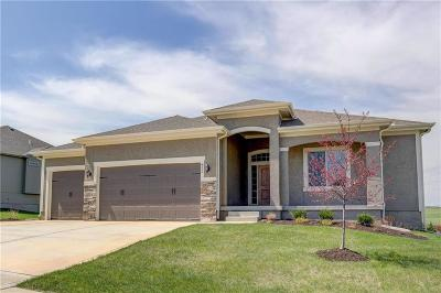 Raymore MO Single Family Home For Sale: $365,000
