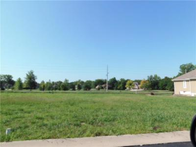 Peculiar Residential Lots & Land For Sale: 11309 Trevor Drive