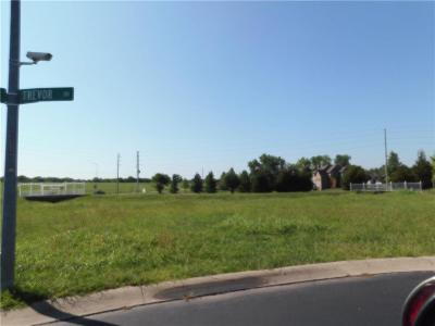 Peculiar Residential Lots & Land For Sale: 11407 Trevor Drive
