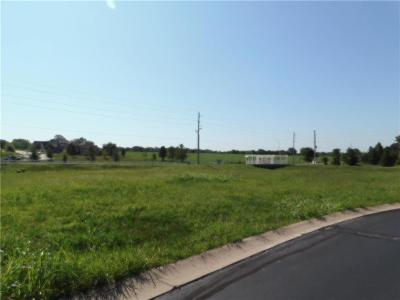 Peculiar Residential Lots & Land For Sale: 22625 Vincent Street