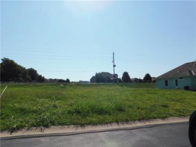 Peculiar Residential Lots & Land For Sale: 22505 Vincent Street