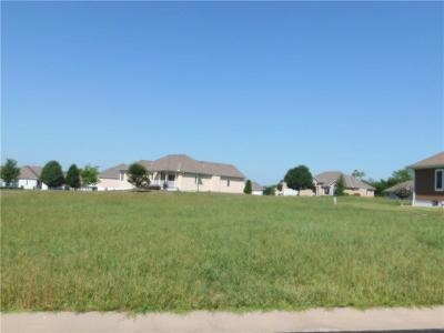 Peculiar Residential Lots & Land For Sale: 22618 Vincent Street