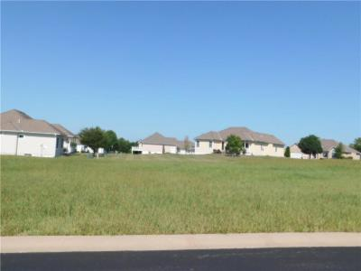 Peculiar Residential Lots & Land For Sale: 22620 Vincent Street