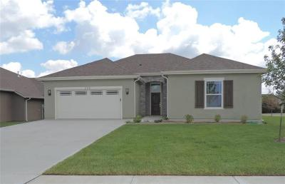 Lawrence Single Family Home For Sale: 326 Shannon Court