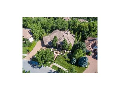 Leawood Single Family Home For Sale: 3204 W 139th Street