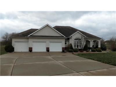 Grain Valley Single Family Home For Sale: 1309 Foxtail Drive