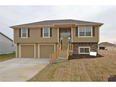 Platte City Single Family Home For Sale: 119 Roller Court