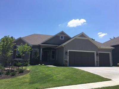 Lenexa Single Family Home For Sale: 8119 Lone Elm Road