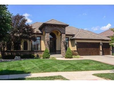 Lenexa Single Family Home For Sale: 9012 Vista Drive