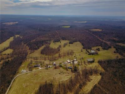 St. Clair County Single Family Home For Sale: 10205 SE 201 Road