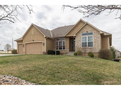 Lee's Summit Single Family Home For Sale: 3029 SW Lewis Place