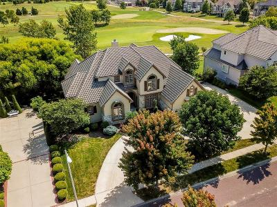 Overland Park Single Family Home For Sale: 14001 Dearborn Street