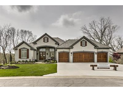 Parkville Single Family Home For Sale: 6049 Southlake Drive