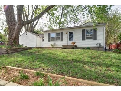 Raytown Single Family Home For Sale: 9113 E 52nd Terrace