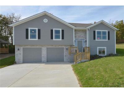 Platte City Single Family Home For Sale: 128 Roller Court