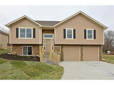Platte City Single Family Home For Sale: 130 Roller Court