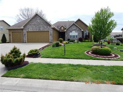 Cass County Single Family Home For Sale: 11705 Centennial Street