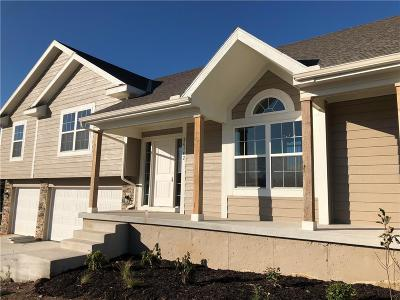 Olathe Single Family Home For Sale: 26142 W 142nd Terrace