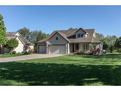 Louisburg Single Family Home For Sale: 6014 W 295 Street