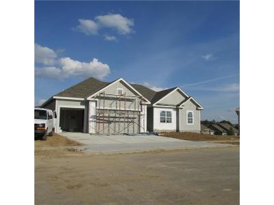 Kearney Single Family Home For Sale: 603 Englewood Drive