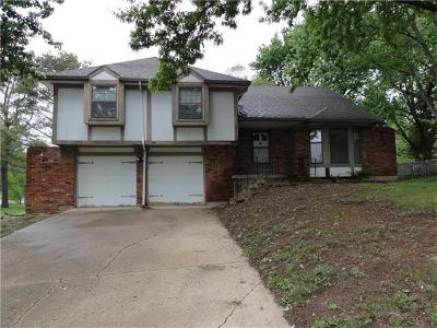 Shawnee Single Family Home For Sale: 6644 Central Street