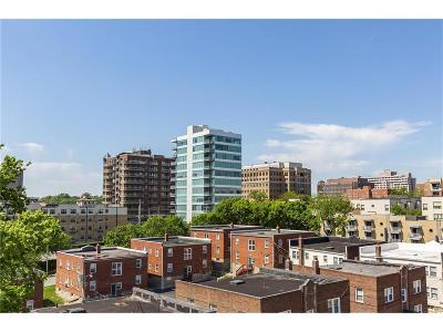 Kansas City Condo/Townhouse For Sale: 300 W 45th Terrace #302