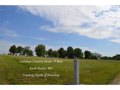 Knob Noster Residential Lots & Land For Sale: Track3 NE P Highway