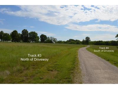 Knob Noster Residential Lots & Land For Sale: Track4 NE P Highway