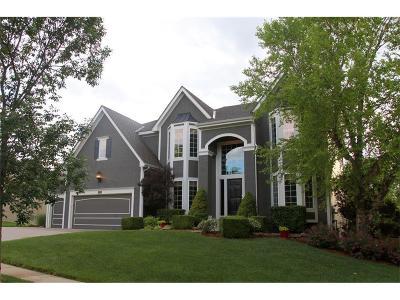 Johnson-KS County Single Family Home For Sale: 14616 Carter Street
