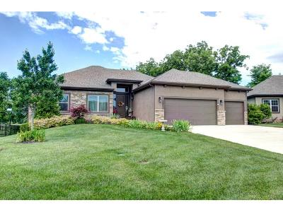 Spring Hill KS Single Family Home Sold: $380,000