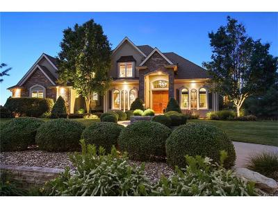 Kearney Single Family Home For Sale: 12107 Ridgeview Road