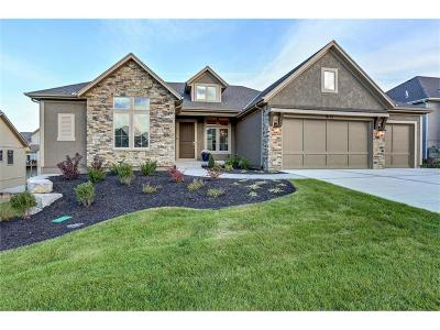 Lenexa Single Family Home For Sale: 8115 Lone Elm Road