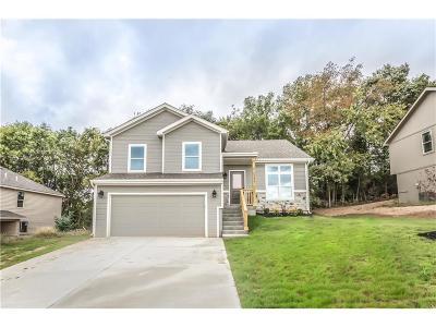 Platte City Single Family Home For Sale: 132 Roller Court