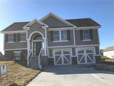 Kearney Single Family Home For Sale: 1704 Renea Court