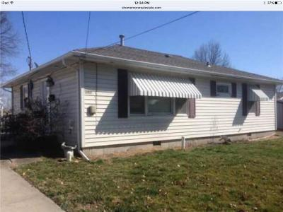 Livingston County Single Family Home For Sale: 409 Williams Street