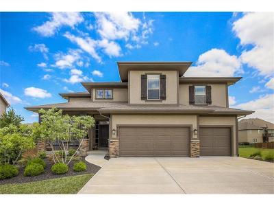 Lenexa Single Family Home For Sale: 9623 Belmont Drive